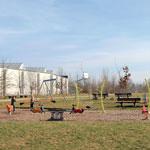 spielplatz-virchow