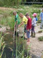 Bächingen: Umweltstation mooseum