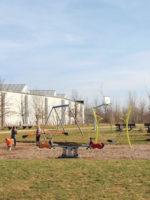 Augsburg: Spielplatz im Virchowviertel