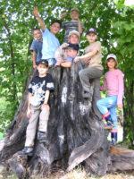 """""""Raus in die Natur"""" mit dem Team vom Naturpark-Haus Oberschönenfeld"""