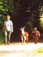 Auf Tour mit Ziegen: Ziegen-Trekking in den Westlichen Wäldern