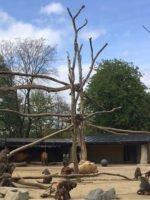 Augsburg: Zoo
