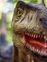Denkendorf: Dinopark