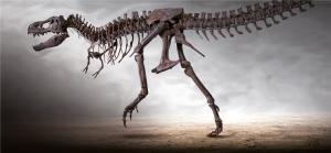 Dinosaurier Museum Altmuhltal Giganten Der Urzeit Lieslotte