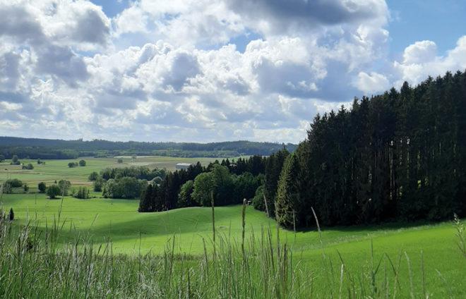 Buschelberg