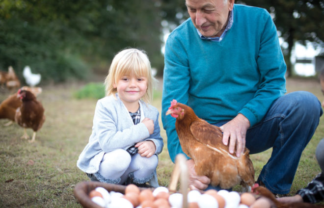 Mann zeigt Mädchen ein Huhn