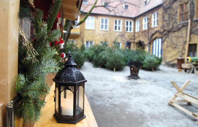 Weihnachtsbäume im Hof der Fuggerei Augsburg