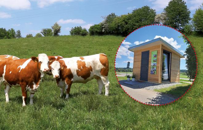 Kühe und Milchautomat von Familie Seitz aus Neusäß