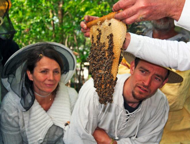menschen bienenwabe