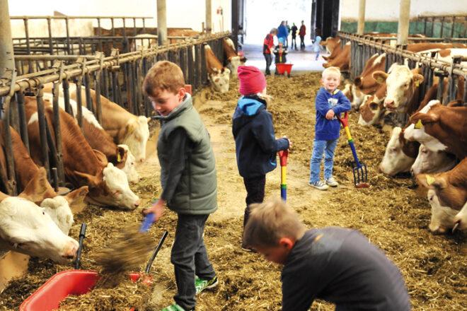 Mehrere Kinder in einem Kuhstall