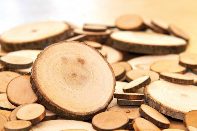 Holzscheiben