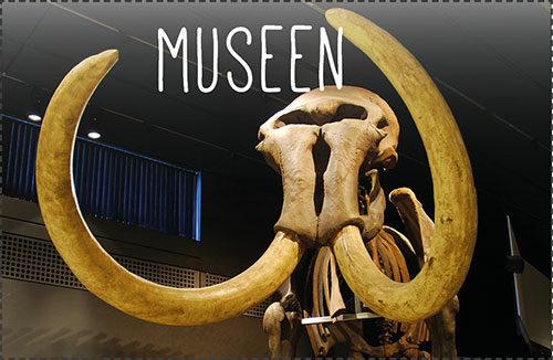Fast 100 tolle Museen in unserer Region