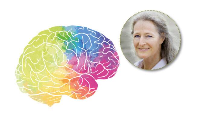 Collage: Birgit Spengler mit illustriertem Gehirn